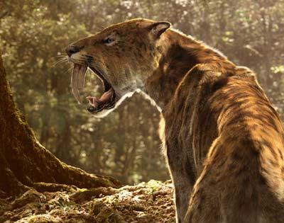 Prehistoric Park - Tigres à Dents de Sabre [DVDRip - FR] [FS]